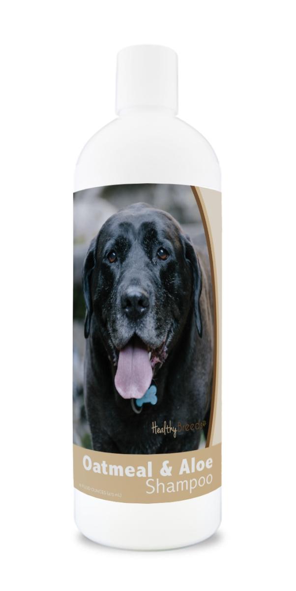 Healthy Breeds 840235176336 16 oz Mastador Oatmeal Shampoo with Aloe