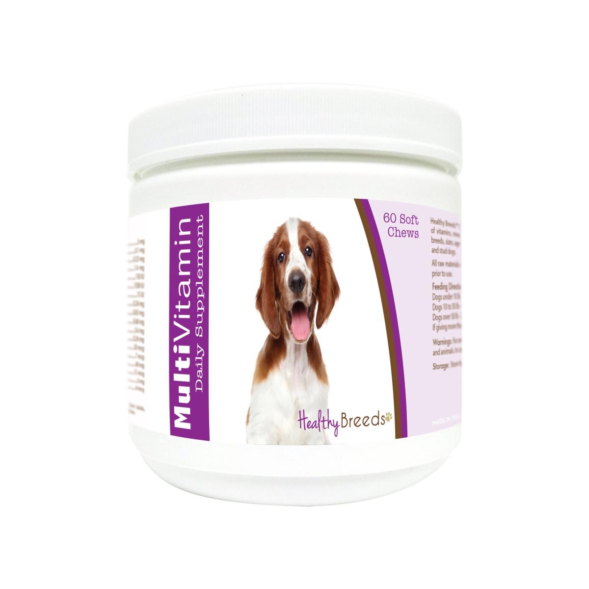 Healthy Breeds 840235177449 Welsh Springer Spaniel Multi-Vitamin Soft Chews - 60 Count
