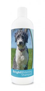 Healthy Breeds 840235177760 12 oz Aussiedoodle Bright Whitening Shampoo