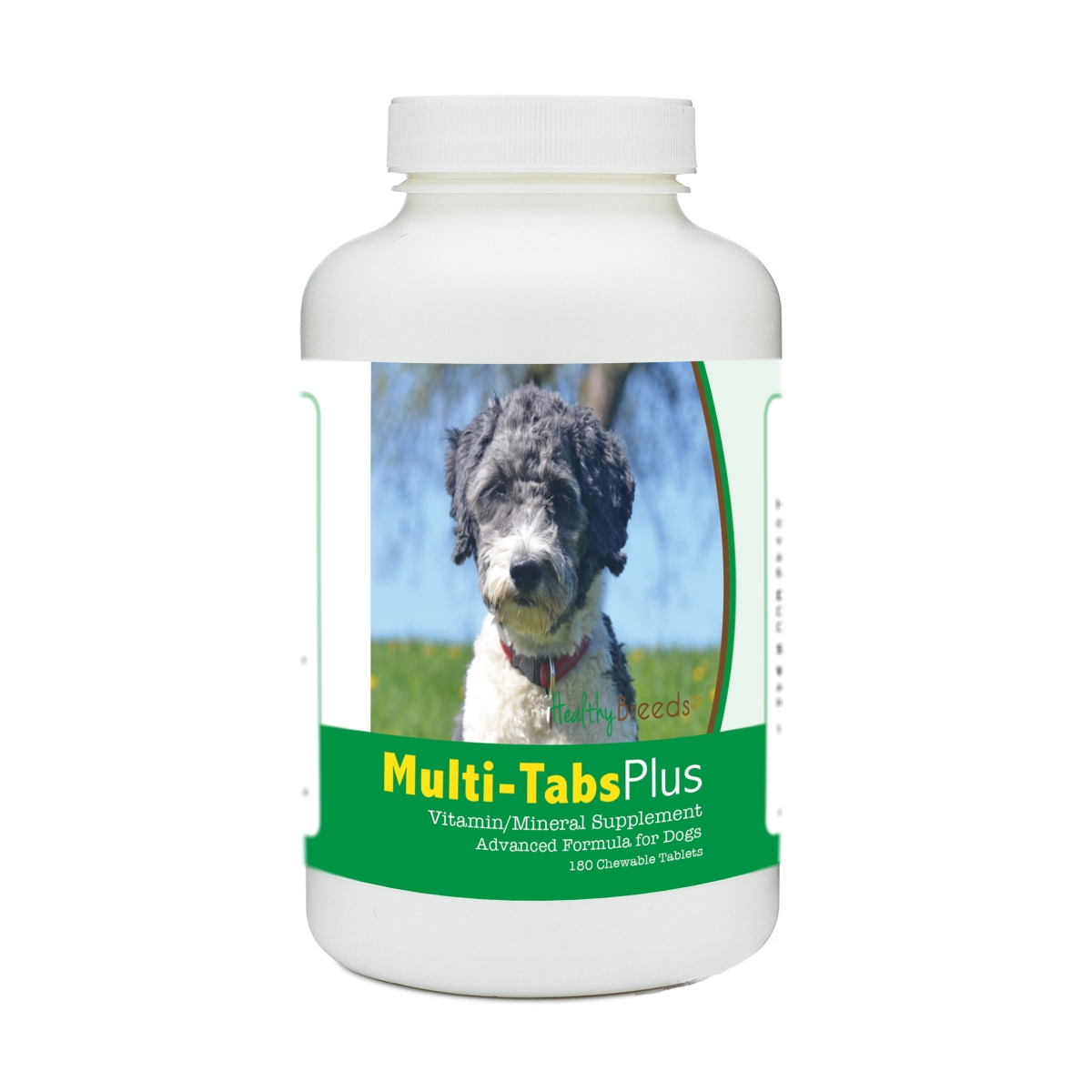 Healthy Breeds 840235177784 Aussiedoodle Multi-Tabs Plus Chewable Tablets - 180 Count