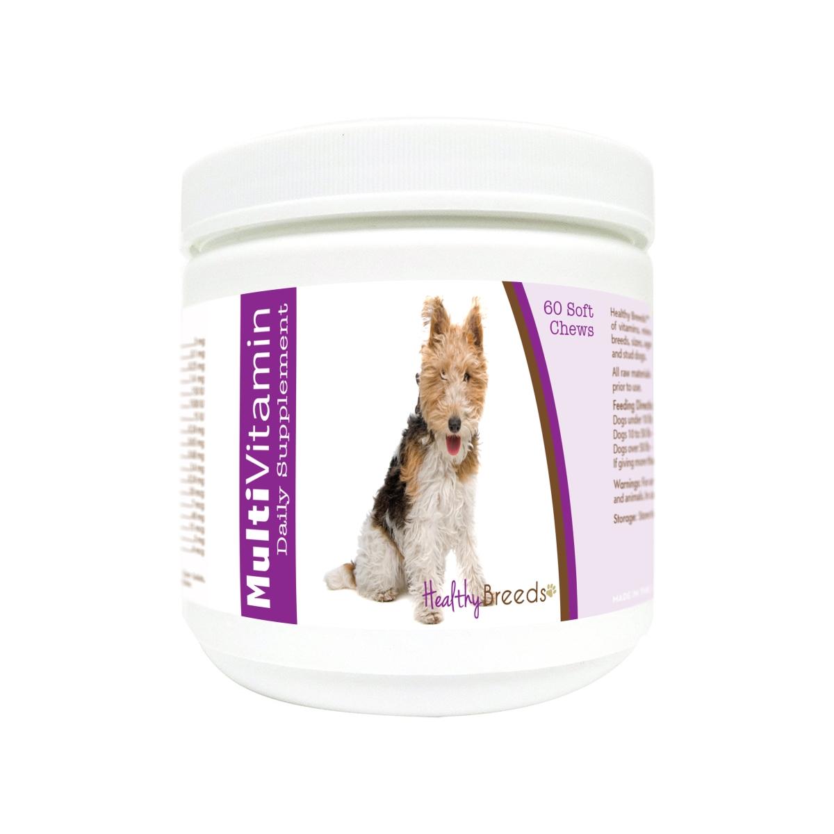 Healthy Breeds 840235179955 Wire Fox Terrier Multi-Vitamin Soft Chews - 60 Count