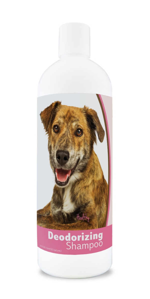 Healthy Breeds 840235180364 16 oz Plott Deodorizing Shampoo