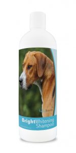 Healthy Breeds 840235180562 12 oz English Foxhound Bright Whitening Shampoo