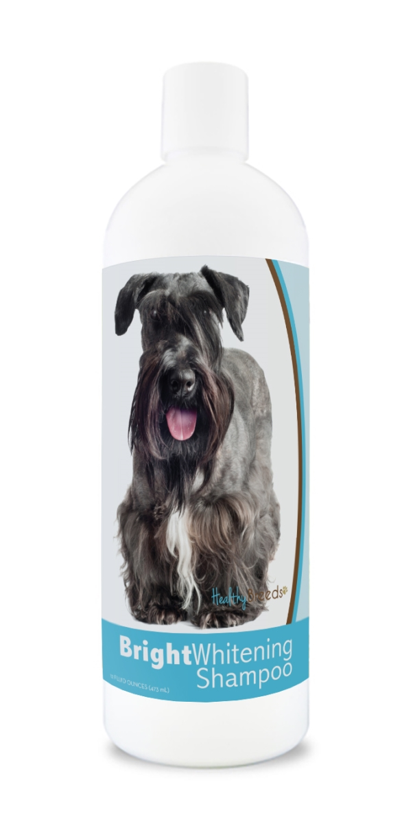 Healthy Breeds 840235180814 12 oz Cesky Terrier Bright Whitening Shampoo