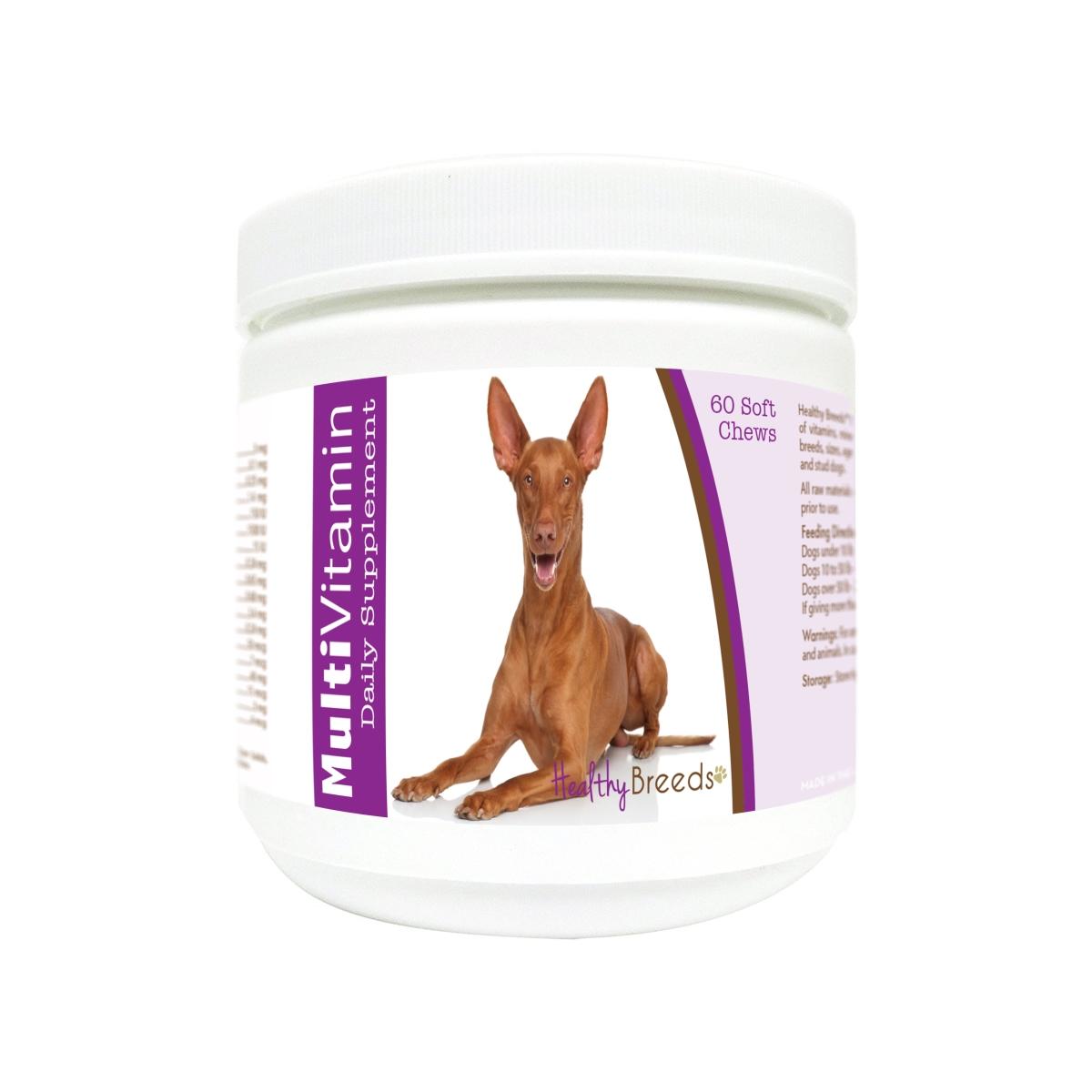 Healthy Breeds 840235181453 Pharaoh Hound Multi-Vitamin Soft Chews - 60 Count