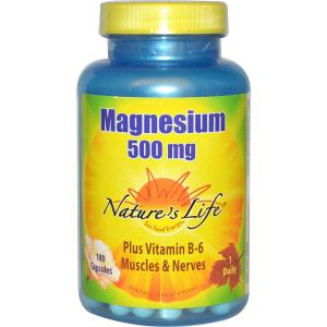 Natures Life 100437 500 mg Magnesium Healthy Capsules