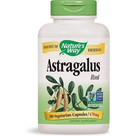1473016 Astragalus Root - 180 Veg Capsules