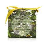 208655 Gli Officinali Soap - Ivy & Clove - Therapeutic & Relaxing