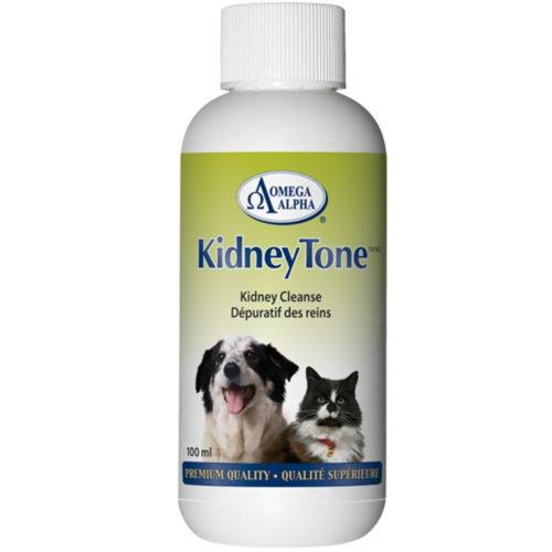 451155 4 oz Kidney Tone Detoxification Formula