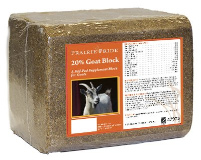 47973 33 lbs. 20 Percentage Goat Block