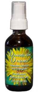 702420 2 oz Dandelion Dynamo Oil - 12 Per Case