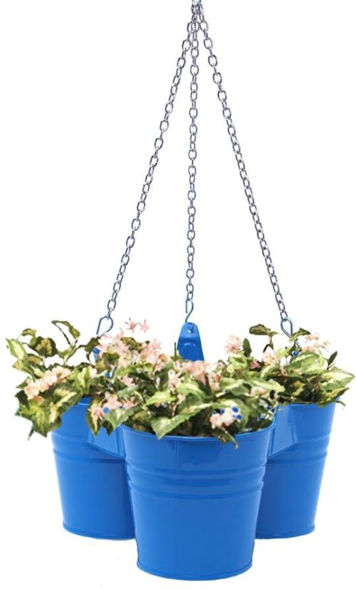 8117E B Enameled Galvanized Hanging 3 Planter Unit for 5.5 in. Plants, Blue