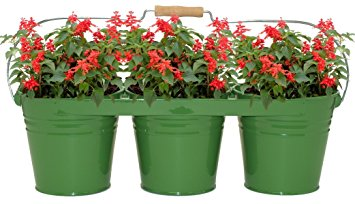 8333E AG Enameled Galvanized Triple Planter with Wood Handle for 6.5 in. Pots, AppleGreen