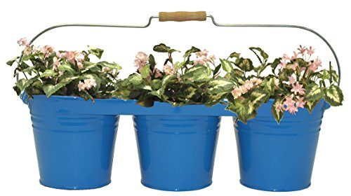 8333E B Enameled Galvanized Triple Planter with Wood Handle for 6.5 in. Pots, Blue