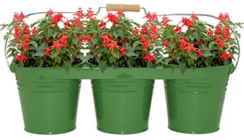 8333E SA Enameled Galvanized Triple Planter with Wood Handle for 6.5 in. Pots, Sage