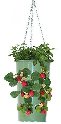 8395E AG Enameled Galvanized Hanging Strawberry, Floral Planter - AppleGreen