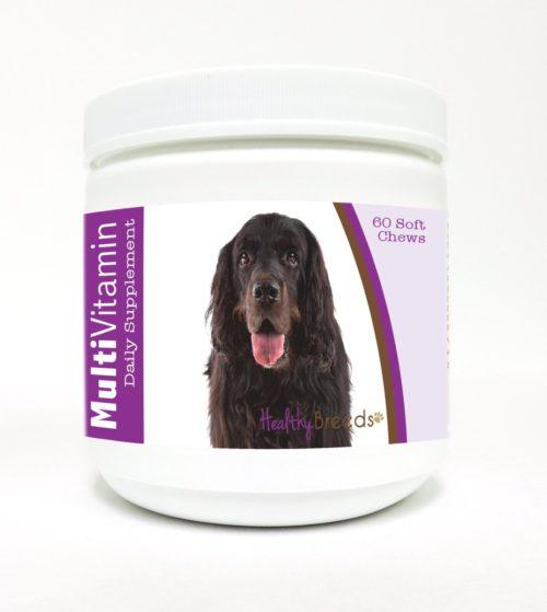 840235108863 Gordon Setter Multi-Vitamin Soft Chews - 60 Count