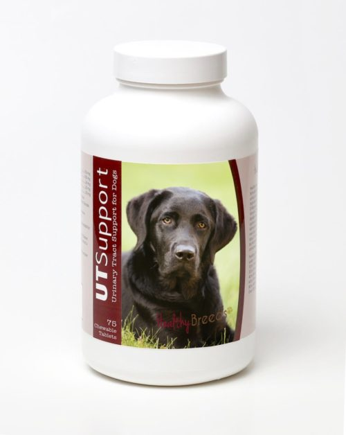 840235144076 Labrador Retriever Cranberry Chewables - 75 Count