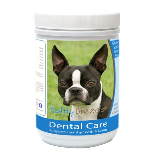 840235162940 Boston Terrier Breath Care Soft Chews for Dogs - 60 Count