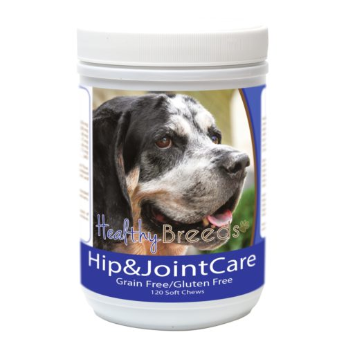 840235183440 Bluetick Coonhound Hip & Joint Care, 120 Count