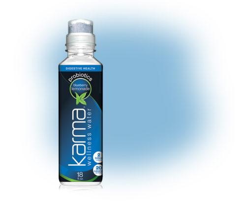 9930004 18 oz Probiotics Blueberry Lemonade - 12 per Case