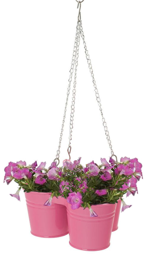Enameled Galvanized Hanging 3 Planter Unit for 5.5 in. Plants, HotPink