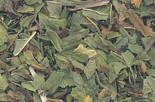 H16PEPC 1oz Peppermint Leaf Cut - Mentha Piperita