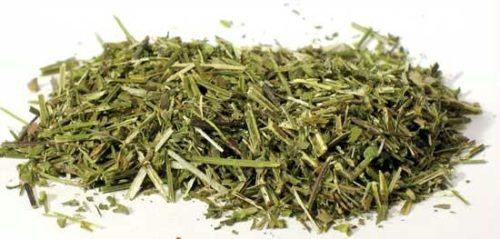 H16SCUC 1oz Scullcap Cut - Scutellaria laterifolia