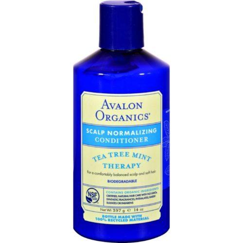 HG0253310 14 fl oz Organics Treatment Conditioner, Tea Tree Mint