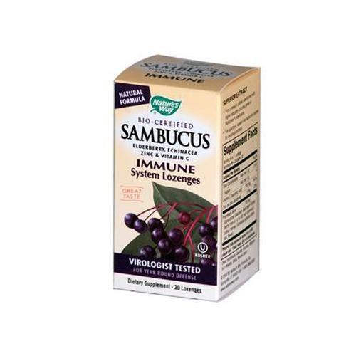 HG0666248 Sambucus Immune Lozenges - 30 Lozenges