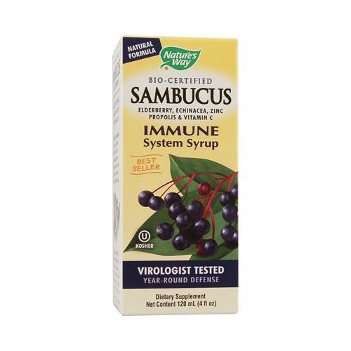 HG0888040 4 fl oz Sambucus Immune Syrup