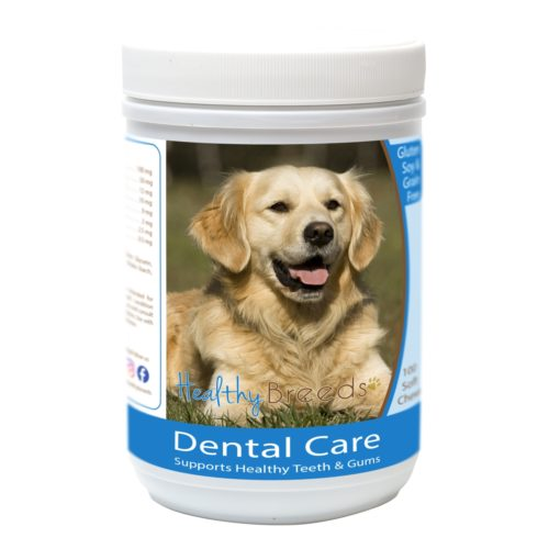 Healthy Breeds840235162834 GoldenRetriever Breath CareSoft Chews for Dogs - 100 Count