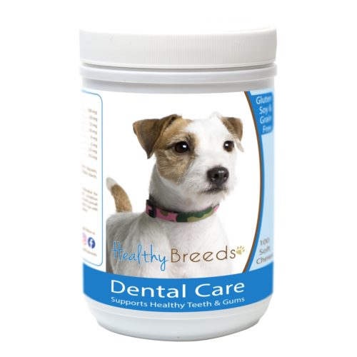 Healthy Breeds840235163046 ParsonRussell Terrier Breath CareSoft Chews for Dogs - 100Count