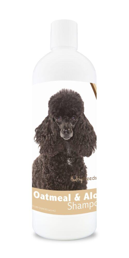 840235112181 16 oz Poodle Oatmeal Shampoo with Aloe