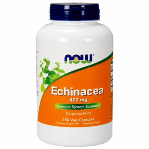 Echinacea 250 Caps by Now Foods