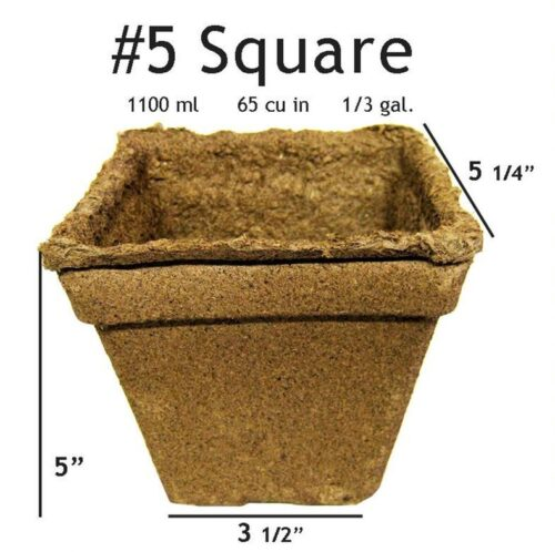 #5 Square Pot - 20 pots