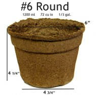 #6 Round Pot - 20 pots