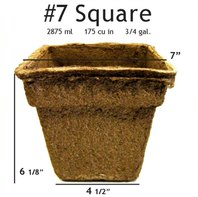 #7 Square Pot - 12 pots